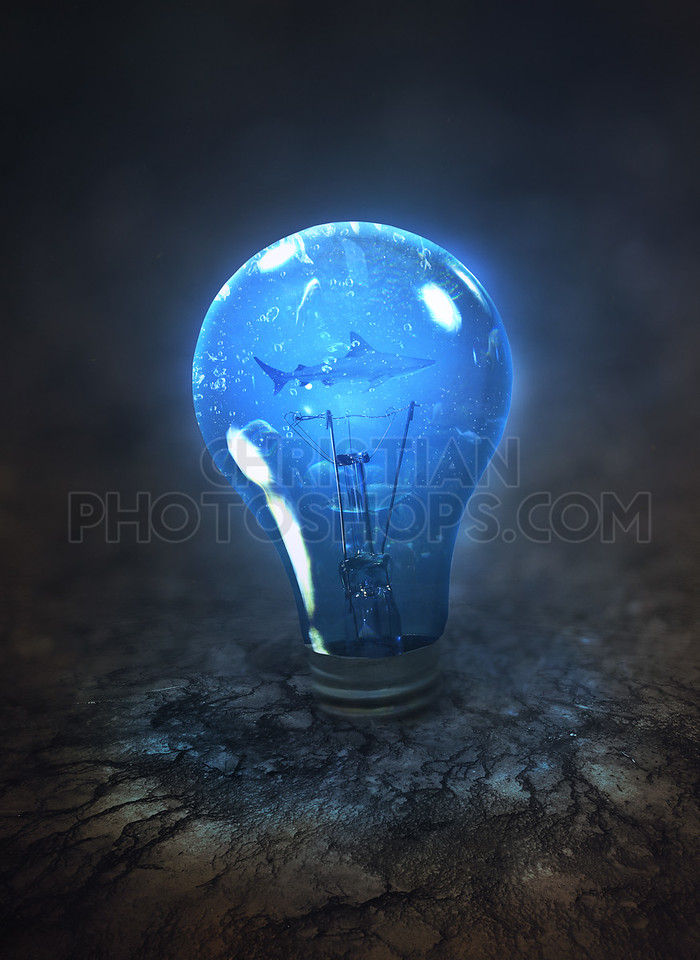 Light bulb with fish inside