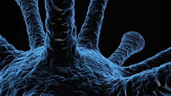 Virus Close up