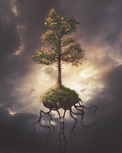 Floating Tree