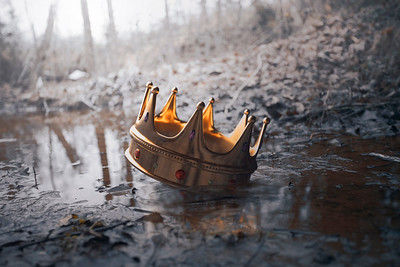 Crown in the muddy water