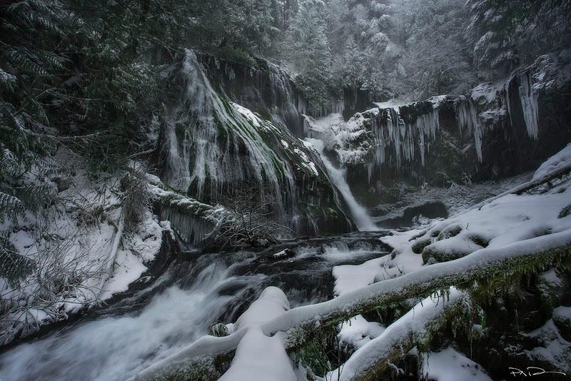 Winter Veins - Panther Creek, Washington