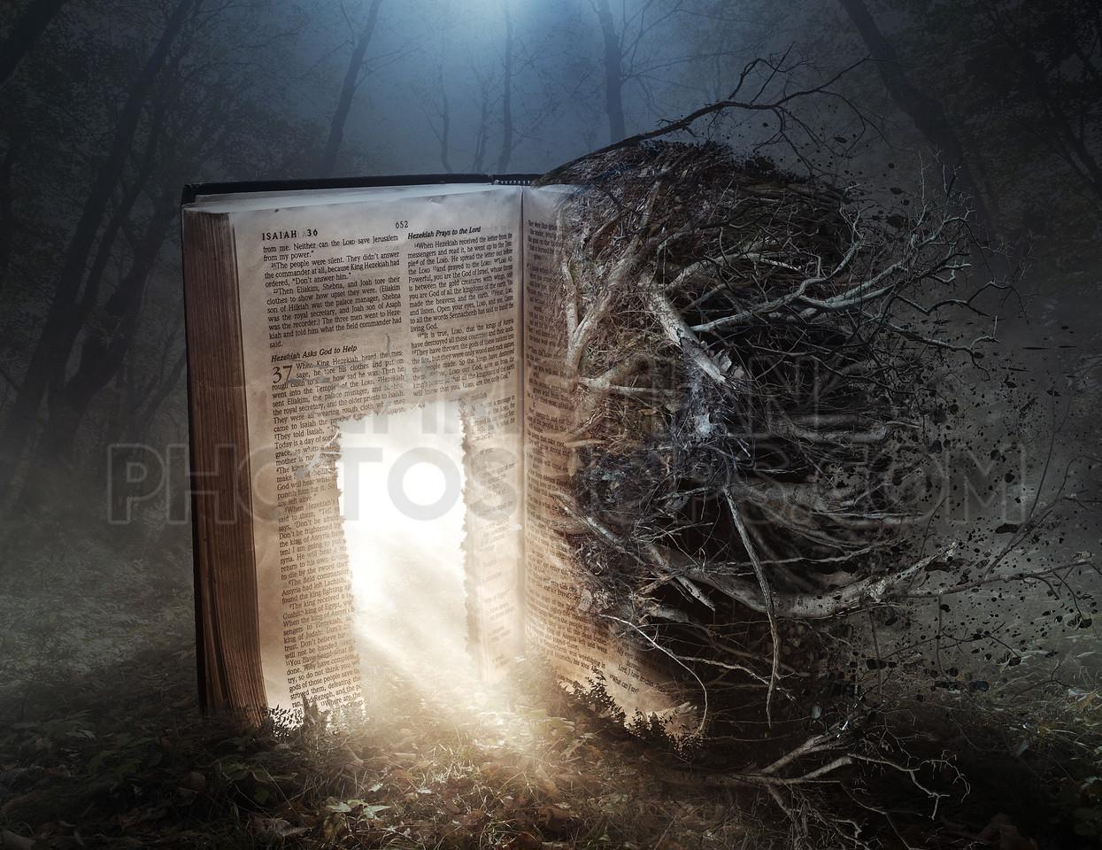 Decaying Bible with open door