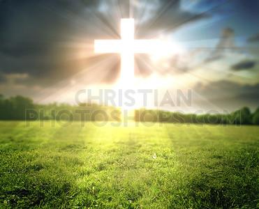 Bright cross in field