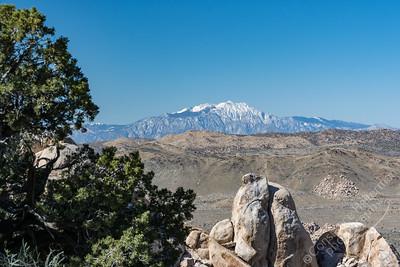 Joshua Tree National Park - snowy peak