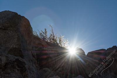Joshua Tree National Park - sunburst