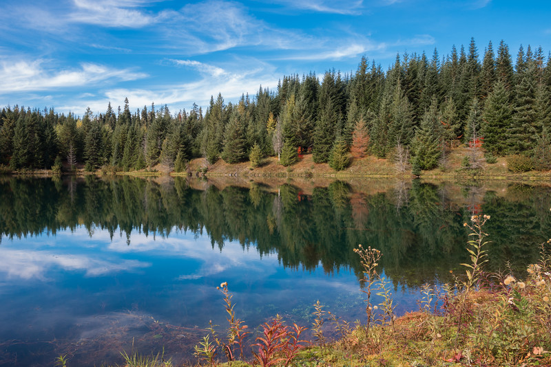 Reflections at Gold Creek Pond  at Snoqualmie Pass, Wa