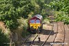 180813-008  DB Cargo class 66/0 No. 66161 sat on the end of W.H. Davis's branch line. Plans to collect some modified hoppers were scuppered due to 'paperwork issues' so the loco left as 0Z19, 16:15 Shirebrook, W.H.Davis - Doncaster, Belmont down yard.