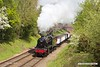 190512-026  LMS Stanier 8F 2-8-0 No. 48305 passing Charnwood with the mineral wagons, running as 7C17, 11:20 Loughborough - Swithland. 48305 was returned to traffic, after a overhaul, just in time to appear at the gala, making a rare appearance for a pair of Stanier 8F's at the same event