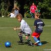 FLD_6C_DINOSHARKS_09-20-14-16