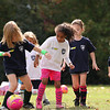 U6G PROEHL PARK 3H PINK LADIES VS   1100AM 10-18-14_015