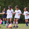 U6G PROEHL PARK 3H PINK LADIES VS   1100AM 10-18-14_003