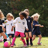 U6G PROEHL PARK 3H PINK LADIES VS   1100AM 10-18-14_014