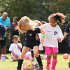 U6G PROEHL PARK 3H PINK LADIES VS   1100AM 10-18-14_016