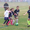 U7G_FIRE ANTS VS CHEETAHS_03-21-2015_JR_001