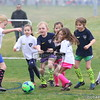 U7G_FIRE ANTS VS CHEETAHS_03-21-2015_JR_004