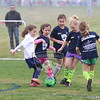 U7G_FIRE ANTS VS CHEETAHS_03-21-2015_JR_002