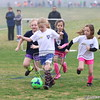 U7G_FIRE ANTS VS CHEETAHS_03-21-2015_JR_006
