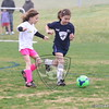 U7G_FIRE ANTS VS CHEETAHS_03-21-2015_JR_016