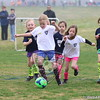 U7G_FIRE ANTS VS CHEETAHS_03-21-2015_JR_005