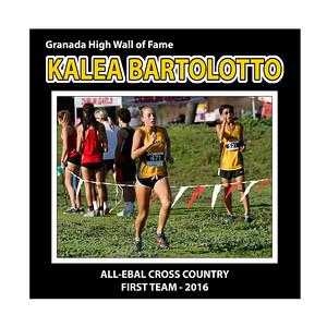 Bartolotto Kalea GHS XC All EBAL 1st Team 2016