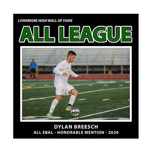 Breesch Dylan LHS bSoc EBAL HM 2020