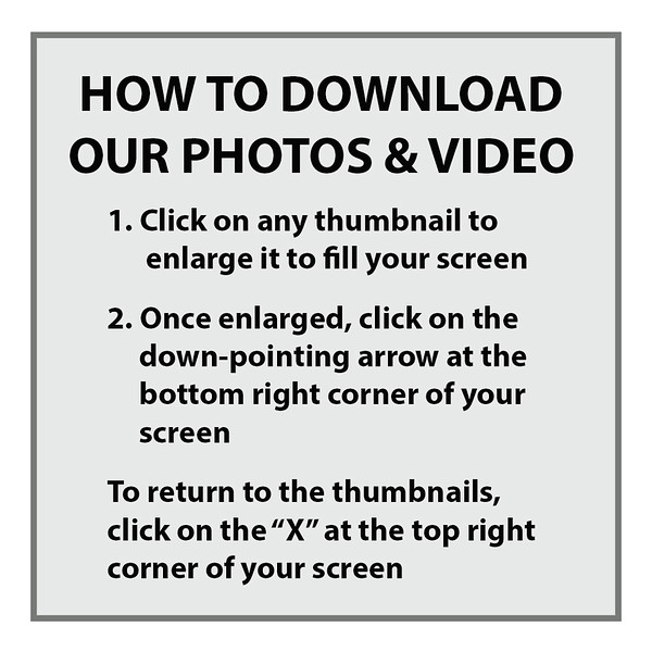 AAA - How to download our photographs