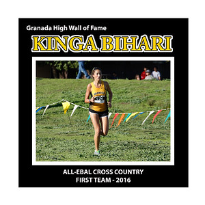 Bihari Kinga GHS XC All EBAL 1st Team 2016