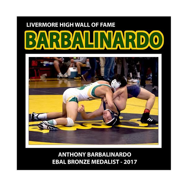 Barbalinardo Anthony  LHS Wres 113 3rd EBAL  2016-2017