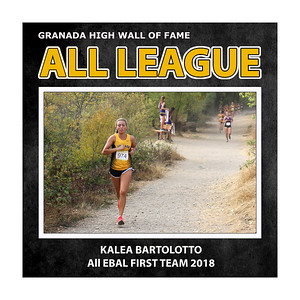Bartolotto Kalea GHS All League 2018