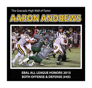 ANDREWS FB-Aaron_Andrews 17 x 17 - Version 02