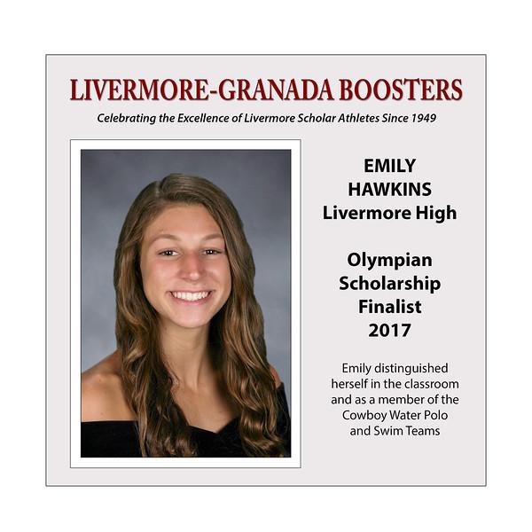 Hawkins Emily LHS 2017 (17 X 17)