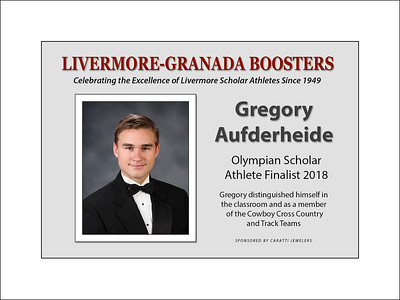 Aufderheide Gregory 2018