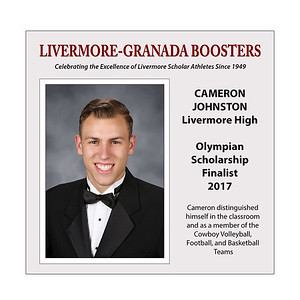 Johnston Cameron LHS 2017 (17 X 17)