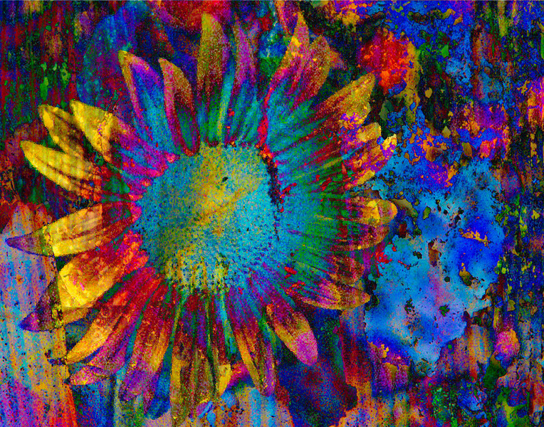 First Place Color Print  for 2010<br /> Florida Camera Club Council (FCCC)<br /> TITLE: PSYCHEDELIC SUNFLOWER