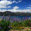 Lake Trafull, Argentina
