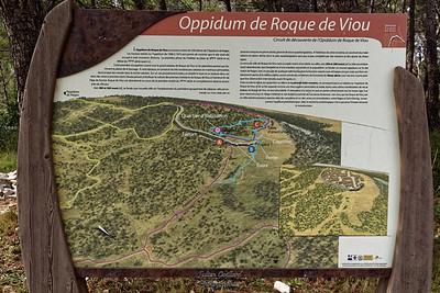 Roque de Viou