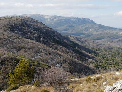 27-01-11 Pivaut et Mourre d'Agnis