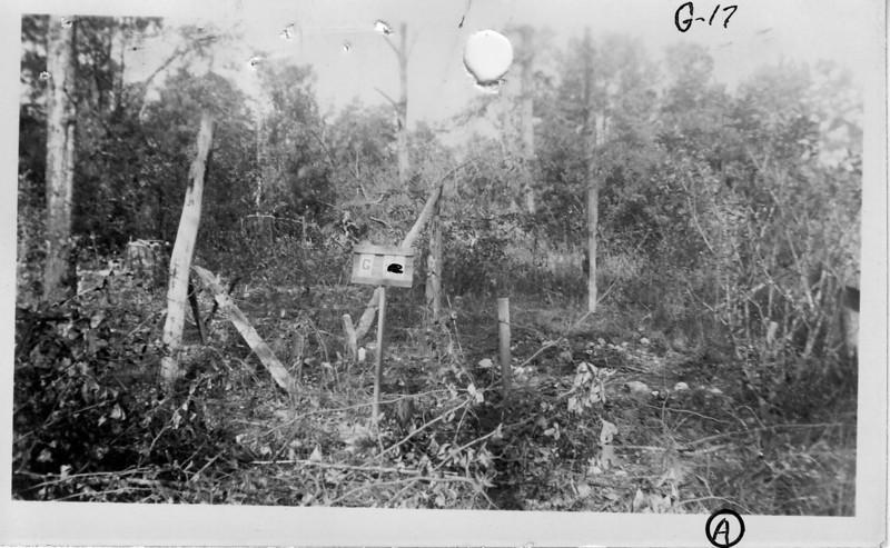 G-17 Ward Graveyard A