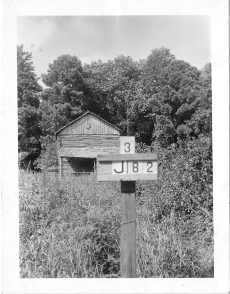 J 82 photo 2