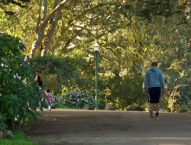 Walking Through Alamo Square Park
