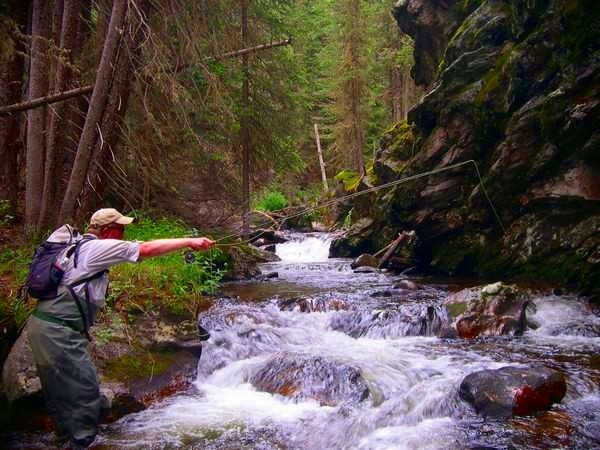 Pocket water fishing for native Colarado River Cutthroat trout.