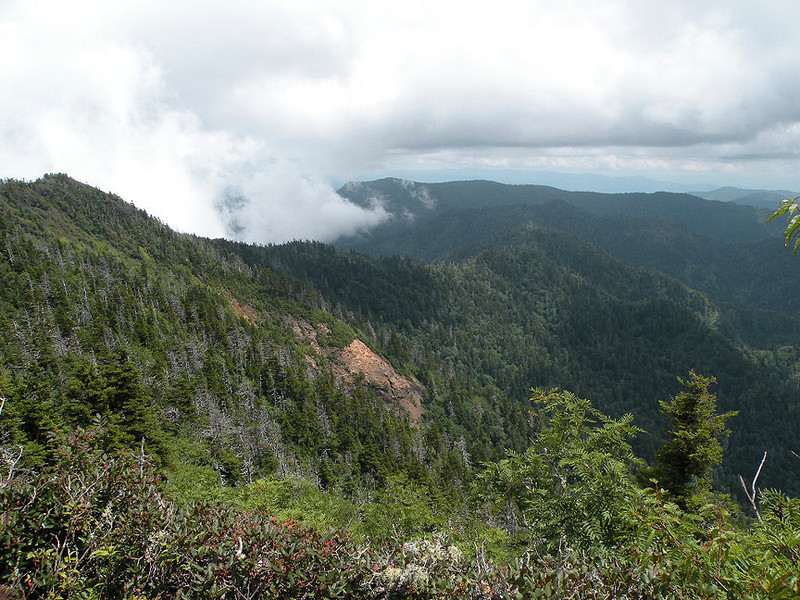 View from The Boulevard Trail showing only a portion of the long ridge we just traversed to arrive at the Mt. LeConte Summit. You can see from here all the way back to Newfound Gap parking lot! We are only a few hundred yards from the shelter now.