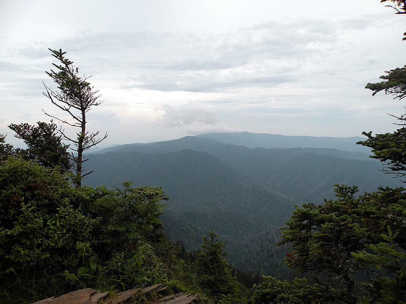 View from Cliff Tops on Mt. LeConte. No sunset this evening, but lots of wind and a wonderful historic lecture on the key role Mt. LeConte played in helping bring about the Smokies National Park.  Thanks Ranger Danny Thomas!