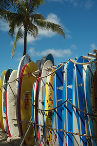 Ready to Surf