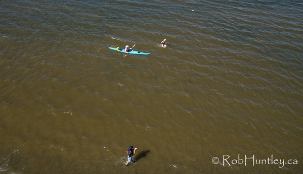 A late arrival. Ottawa Riverkeeper 4K Swim. Kite aerial photograph.