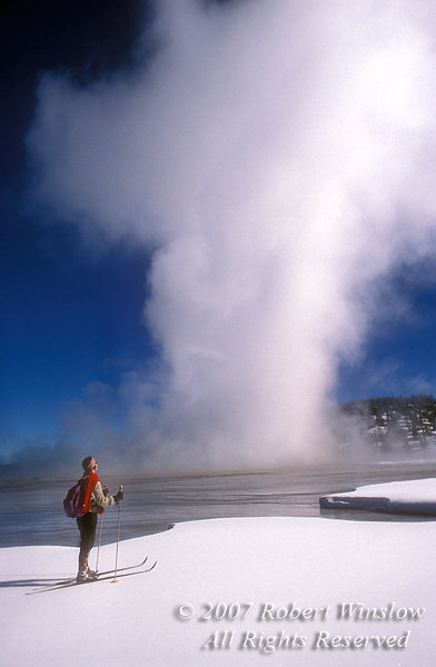 Model Released, Woman Cross Country Skiing, Winter, Yellowstone National Park, Wyoming