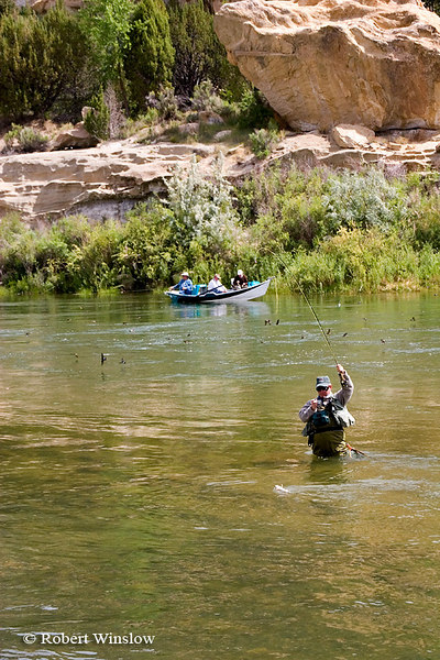 NoMR, Fishing, San Juan River below Navajo Reservoir Dam, New Mexico
