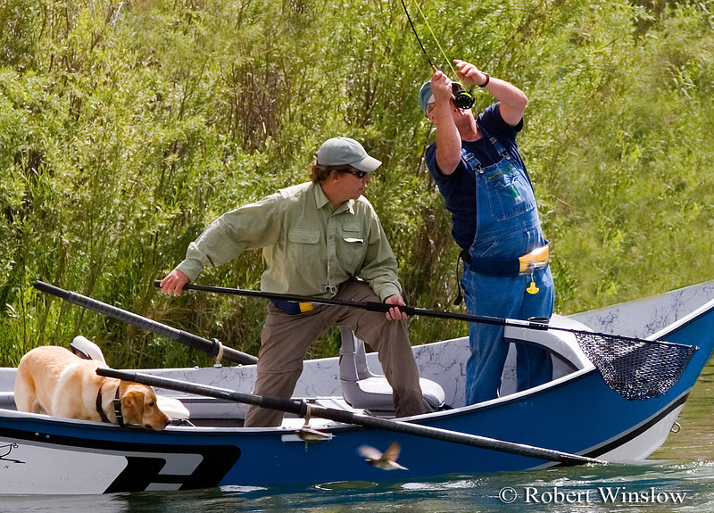 """NoMR, Guide Mark Clark of Rise """"N"""" Fly Guide Service with Client Charles Vestal of Louisiana and Ruger the Dog, Fishing, San Juan River below Navajo Reservoir Dam, New Mexico"""