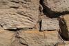 Cannonball Mesa 0501W1C
