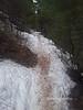Colorado Trail 160804W1C